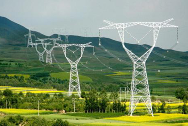500千伏输变电工程电力塔基长期使用林地编制可行性报告